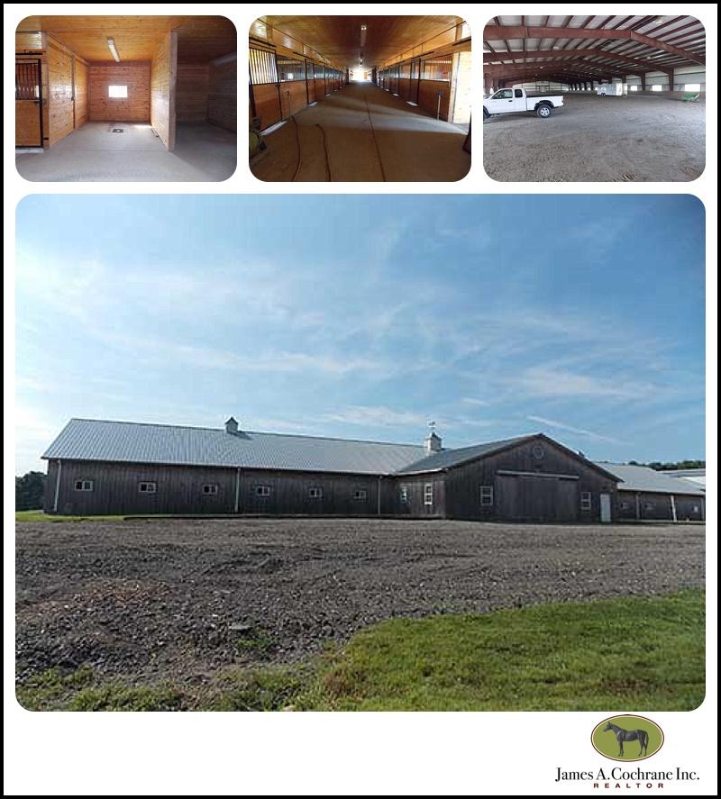 Springdale farm2_0018