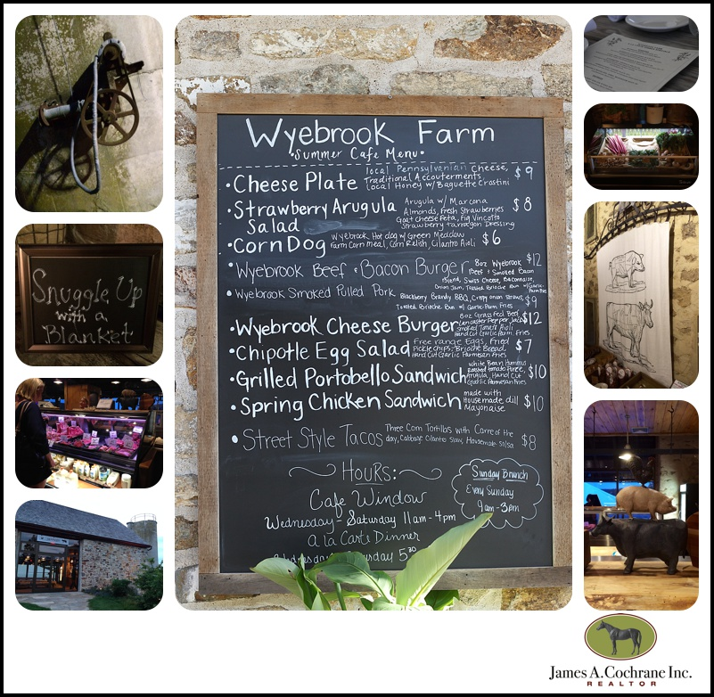 wyebrook1_0063
